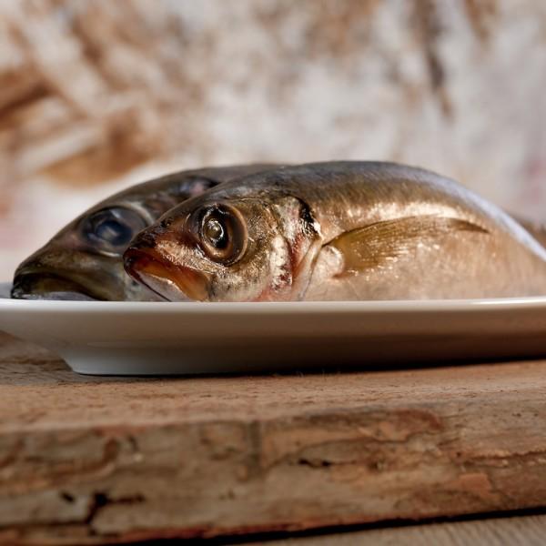 Makrelen ganz 1kg